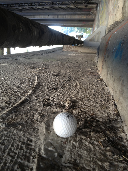 golfball_under_chinchen